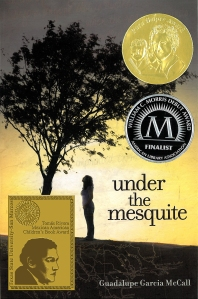 under_mesquite